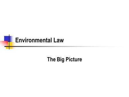 Environmental Law The Big Picture. Exam Preparation Strategy Read the book, carefully. Most of the chapters have one or two problems. (These are called.