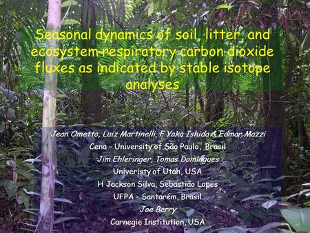 Seasonal dynamics of soil, litter, and ecosystem respiratory carbon dioxide fluxes as indicated by stable isotope analyses Jean Ometto, Luiz Martinelli,