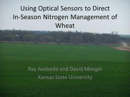 Using Optical Sensors to Direct In-Season Nitrogen Management of Wheat Ray Asebedo and David Mengel Kansas State University.