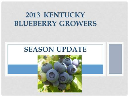 2013 KENTUCKY BLUEBERRY GROWERS SEASON UPDATE. 2012 BLUEBERRY SALES In 2012 the KBGA marketed 4,000 pounds to the Kentucky Public Schools for $14,000.