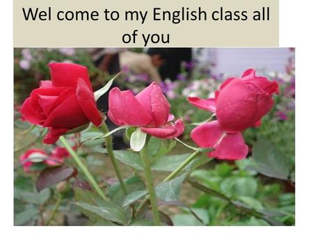 Wel come to my English class all of you