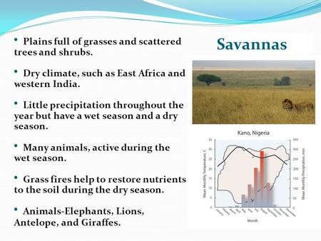 Savannas Plains full of grasses and scattered trees and shrubs. Dry climate, such as East Africa and western India. Little precipitation throughout the.