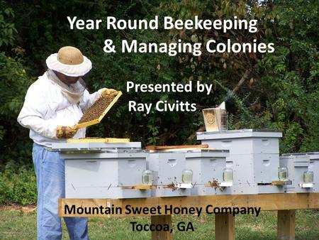 Year Round Beekeeping & Managing Colonies Presented by Ray Civitts Mountain Sweet Honey Company Toccoa, GA.