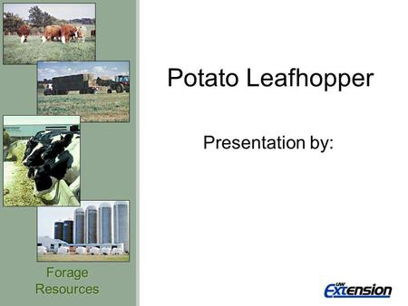 ForageResources Potato Leafhopper Presentation by: