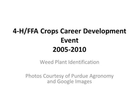 4-H/FFA Crops Career Development Event 2005-2010 Weed Plant Identification Photos Courtesy of Purdue Agronomy and Google Images.