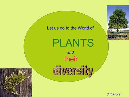 Let us go to the World of PLANTS their S.K.Arora and.