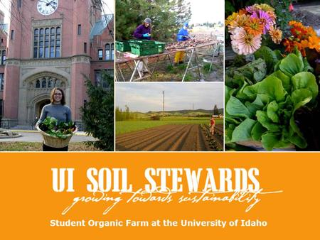 Student Organic Farm at the University of Idaho. Who are the Soil Stewards? University of Idaho Students Committed to Organic Farming & Sustainable Community.