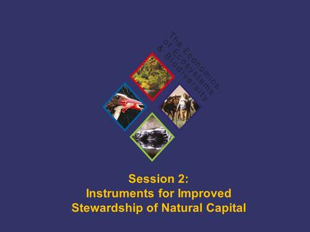 TEEB Training Session 2: Instruments for Improved Stewardship of Natural Capital.