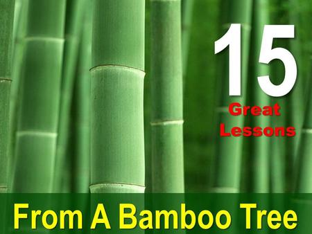 15 From A Bamboo Tree GreatLessons. Bamboo was used since ancient times. A highly useful material, it has been used by man and is still being used for.