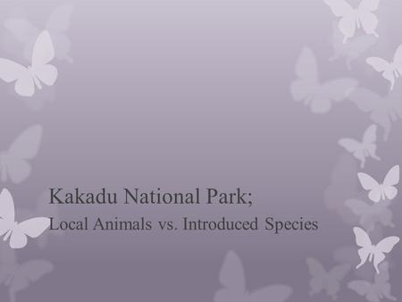 Kakadu National Park; Local Animals vs. Introduced Species.