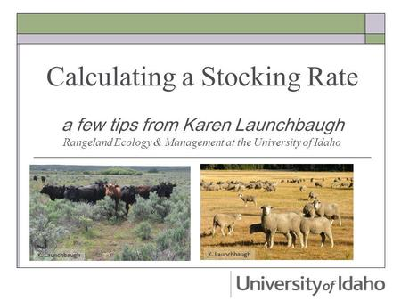 Calculating a Stocking Rate a few tips from Karen Launchbaugh Rangeland Ecology & Management at the University of Idaho K. Launchbaugh.