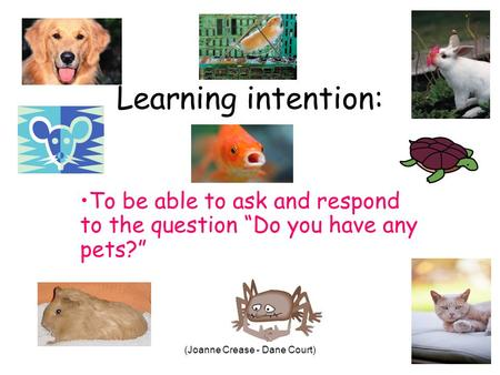 (Joanne Crease - Dane Court) Learning intention: To be able to ask and respond to the question Do you have any pets?
