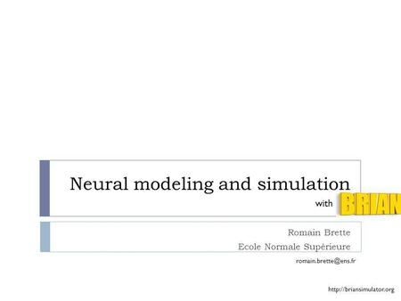 Neural modeling and simulation