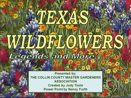 1 Presented by: THE COLLIN COUNTY MASTER GARDENERS ASSOCIATION Created by Judy Toole Power Point by Nancy Furth.
