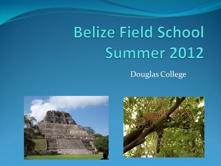 Douglas College. Belize Field School - 2012 Earn 9 university credits in 7 weeks in beautiful, tropical Belize! May 1 – 20, morning classes at Douglas.