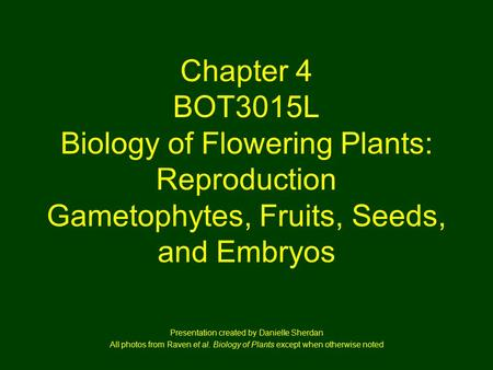 Chapter 4 BOT3015L Biology of Flowering Plants: Reproduction Gametophytes, Fruits, Seeds, and Embryos Presentation created by Danielle Sherdan All photos.