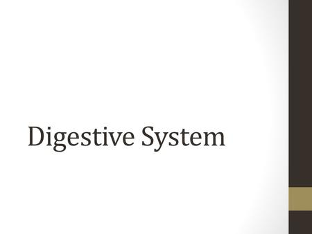 Digestive System. Role of the Digestive System Preparation of food for absorption Preparation of food for use in cell Elimination of unabsorbed food.