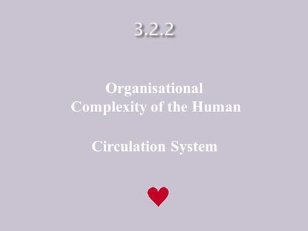 Organisational Complexity of the Human Circulation System.