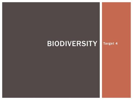 Target 4 BIODIVERSITY.  A term used to describe the variety of life found on Earth or in an ecosystem.  The species in an ecosystem have a strong influence.