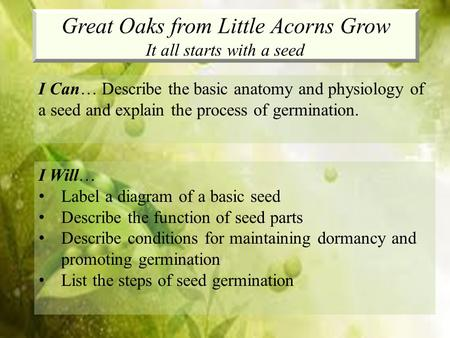 Great Oaks from Little Acorns Grow It all starts with a seed I Can… Describe the basic anatomy and physiology of a seed and explain the process of germination.