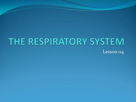 Lesson 04. Overview of the Respiratory System Primary Functions Gas exchange, carries oxygen into body and excels carbon dioxide Provides oxygen to body.