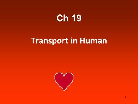 Ch 19 Transport in Human 1. You need to know…… Lymphatic system ABO blood groups Composition of bloodRhesus FactorBlood pressure Pulse Coronary arteries.