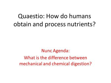 Quaestio: How do humans obtain and process nutrients?