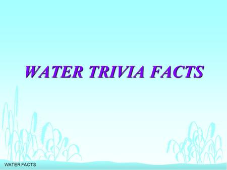 WATER FACTS WATER TRIVIA FACTS. WATER FACTS n HOW MUCH WATER DOES IT TAKE TO PROCESS A QUARTER POUND OF HAMBURGER?