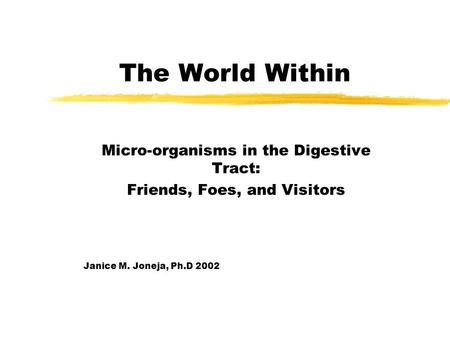 The World Within Micro-organisms in the Digestive Tract: