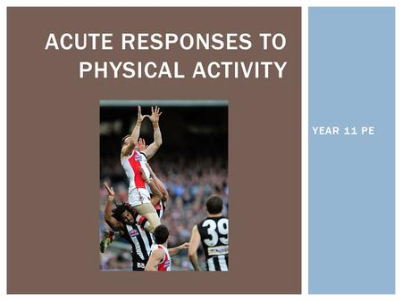YEAR 11 PE ACUTE RESPONSES TO PHYSICAL ACTIVITY.  ACUTE RESPONSES- Immediate, short-term responses to exercise that last only for the duration of the.