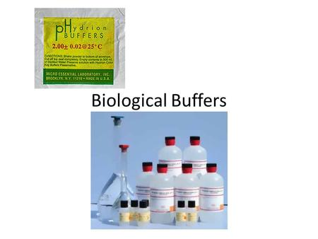 Biological Buffers. Buffers Allow biological fluids to maintain relatively constant pH despite additions of acids or bases.