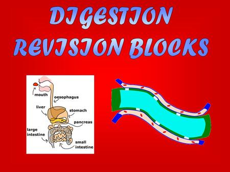 There are two types of digestion: mechanical and chemical. Mechanical digestion is when food is ground up using the teeth. Another example of mechanical.