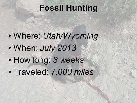 Fossil Hunting Where: Utah/Wyoming When: July 2013 How long: 3 weeks Traveled: 7,000 miles.