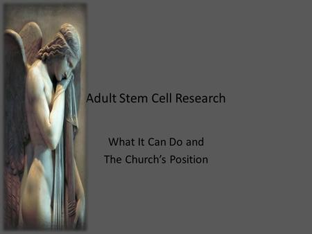 Adult Stem Cell Research What It Can Do and The Church's Position.