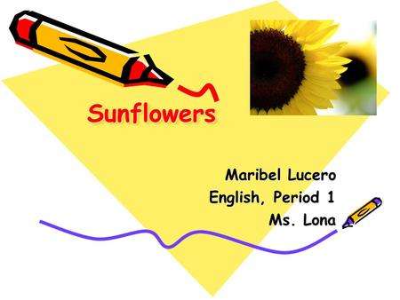 SunflowersSunflowers Maribel Lucero English, Period 1 Ms. Lona.