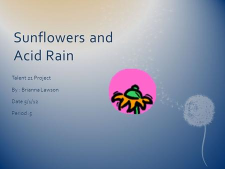 Sunflowers and Acid Rain Talent 21 Project By : Brianna Lawson Date 5/1/12 Period :5.