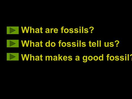 What are fossils? What do fossils tell us? What makes a good fossil?