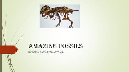 Amazing fossils By Brian Davis Kenyatta Jr.. About this power point  We have reading about fossil hunters and searching for fossils. These are some of.