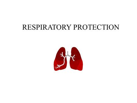 Topics of Discussion Responsibilities Respiratory System