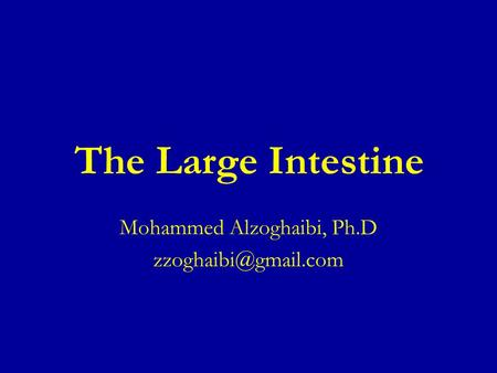The Large Intestine Mohammed Alzoghaibi, Ph.D