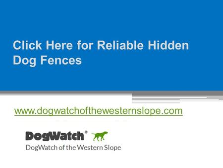 Click Here for Reliable Hidden Dog Fences