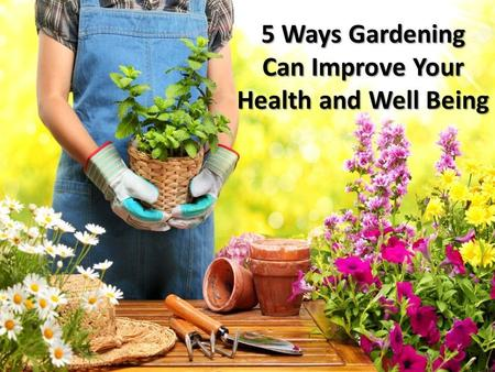 5 Ways Gardening Can Improve Your Health and Well Being