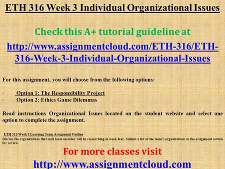 eth 316 organizational issues option 1 the responsibility project