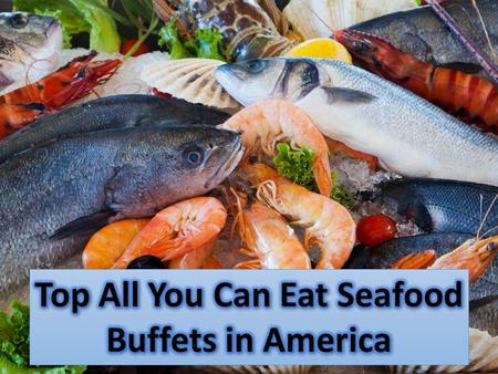 Top All You Can Eat Seafood Buffets in America