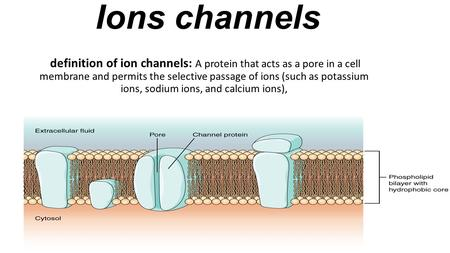 Ions channels definition of ion channels: A protein that acts as a pore in a cell membrane and permits the selective passage of ions (such as potassium.