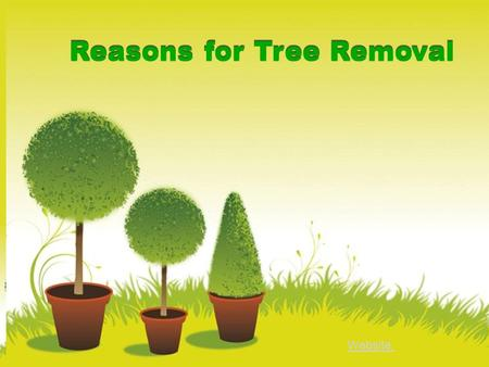 Reasons for Tree Removal Website: