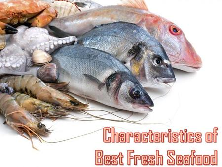Characteristics of Best Fresh Seafood