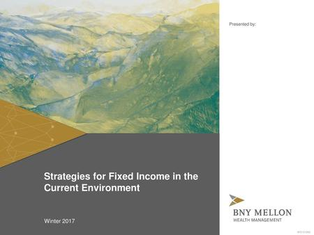Strategies for Fixed Income in the Current Environment