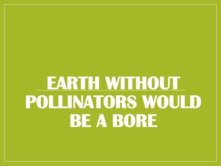 EARTH WITHOUT POLLINATORS WOULD BE A BORE