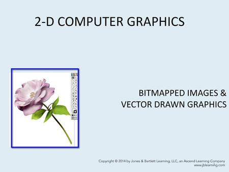 BITMAPPED IMAGES & VECTOR DRAWN GRAPHICS